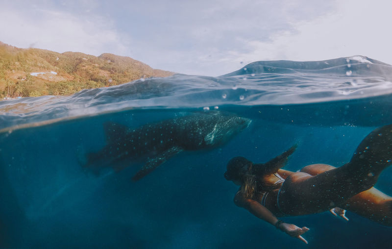 Woman swimming with whale shark in sea