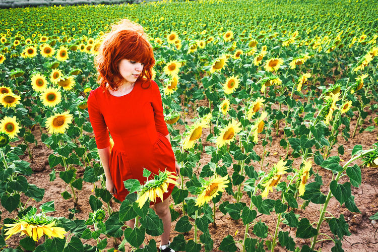 Full length of woman standing on sunflower field