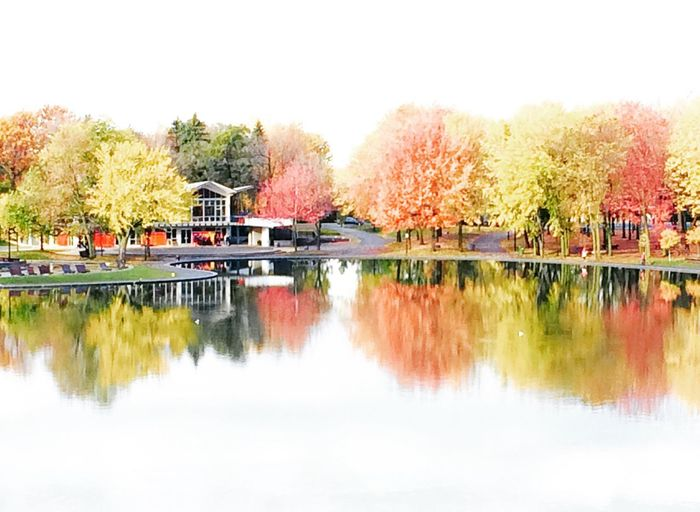 EyeEmNewHere Autumn Beauty In Nature Change Clear Sky Day Lake Leaf Nature No People Outdoors Reflection Scenics Sky Tranquil Scene Tranquility Tree Water Waterfront
