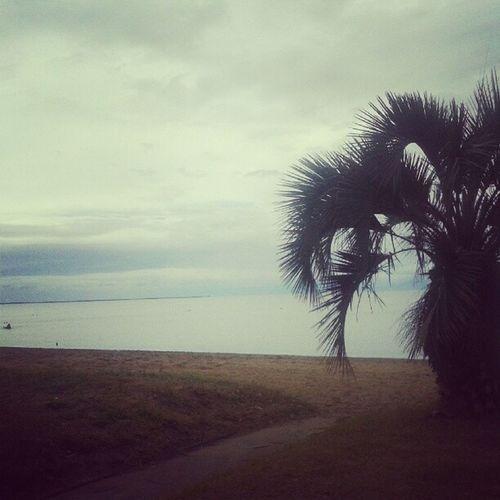 Paradise Arambare
