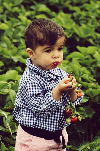 Portrait Of Child Eating