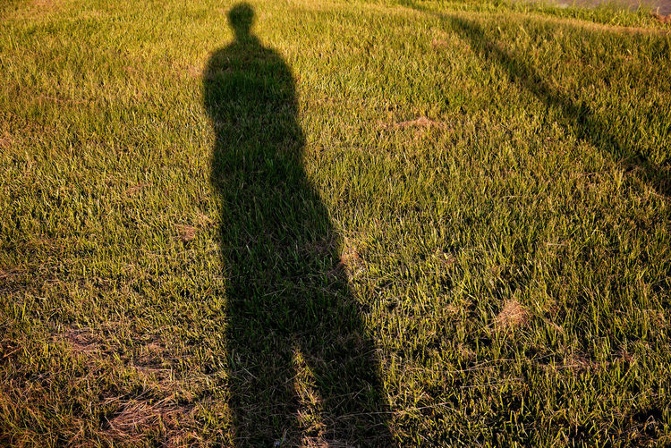 我的影子 Shadow of me Grass Plant Shadows & Lights Sunlight Day Farmer Field Focus On Shadow Grass Green Color Growth High Angle View Land Lifestyles Men Nature One Person Outdoors People Shadow Real People Shadow Shadow Of Me Special Standing Sunlight