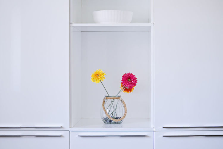 Flowering Plant Flower Plant Freshness Indoors  Nature No People Vulnerability  Fragility Beauty In Nature Vase Flower Head Growth Close-up Decoration Container Inflorescence Still Life Home Interior Glass - Material Purple Abstract Design Minimalism Furniture Design Light Bright
