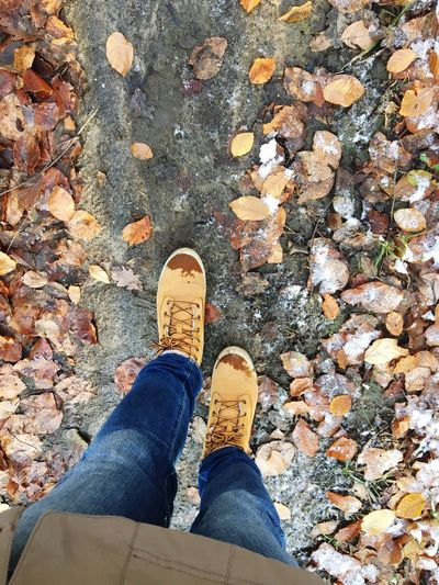 Straight Forward Forward Forest Path Leaves Dirty Shoes Wet Shoes Autumn Low Section Human Leg Shoe Body Part Personal Perspective Human Body Part Real People Directly Above Standing Jeans Unrecognizable Person Casual Clothing High Angle View