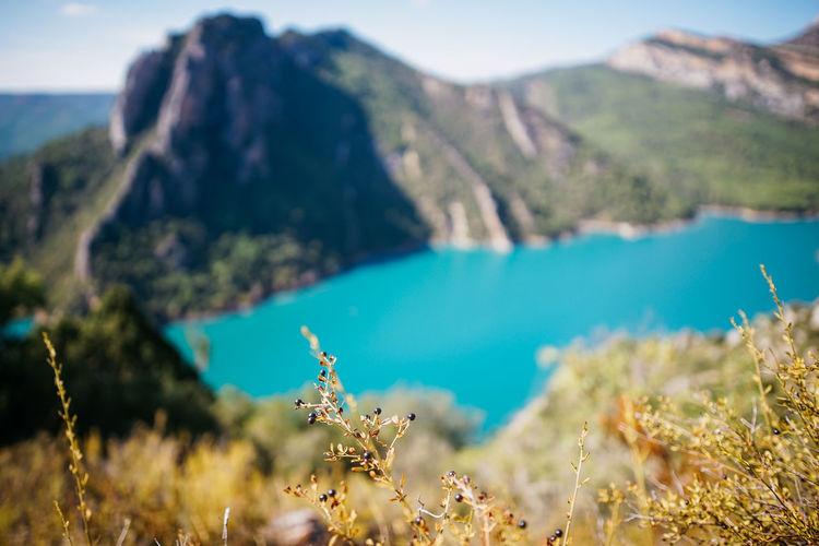 Lleida Corça Landscape Lake View Lake Turquoise