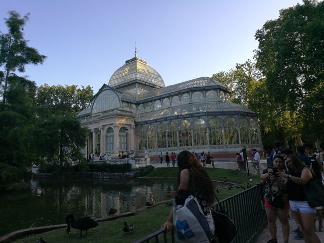 Palacio De Cristal Spain♥ Garri❌ Travel Exposicion Parque Del Retiro Madrid ❤ Ciclismo Travel Destinations Large Group Of People Tourism Architecture Tree Politics And Government Dome Built Structure People Adult Outdoors Sky Water Adults Only Day