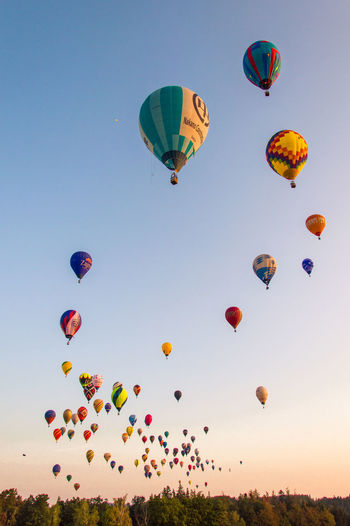 Austria Morning Light Morning Sun Nature Nikon Peace Trees Balloons Balloonworlds2018 Beautfiul Close-up Colorful Flying Hot Air Balloon Lightroom Lowangle Loweraustria Outside Peaceful Photography Race Sky Summer Sunrise Sunshine