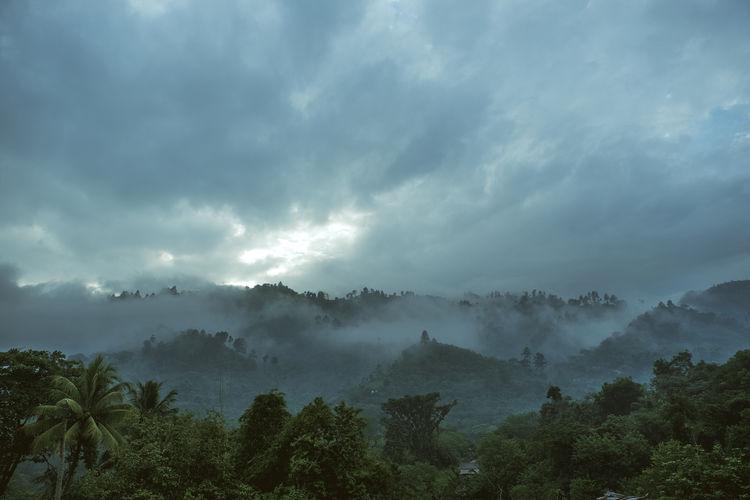 Amazing Place Guatemala Lanquín Nature Tourist Attraction  Destination Fog Forest Idyllic Jungle Mist Mountain Nature Nature Pool Outdoors Paradise Scenics Semuc Champey Sunrise Tourism Tranquility Tree Water Waterfalls