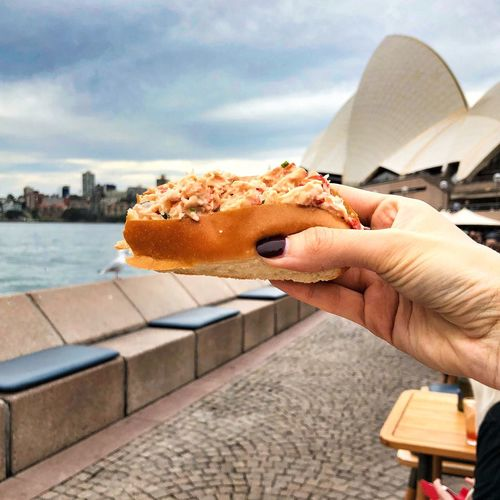 Foodie Crab Roll Visit Sydney Sydney Human Hand Hand One Person Lifestyles Holding