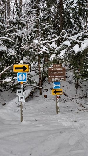 Arrow Beauty In Nature Cold Temperature Day Evergreen Nature No People Outdoors Road Sign Scenics Snow Snowing Trail Trail Signs Tree Weather White Color Winter