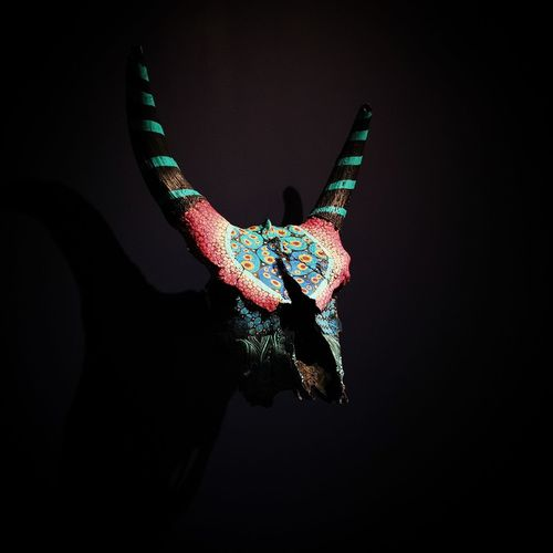 Close-up of an animal representation against black background