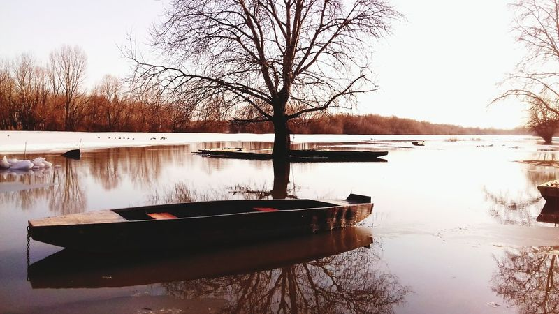Reflection Tree Bare Tree Water Tranquility Nature Lake Winter Tranquil Scene Scenics Beauty In Nature No People Outdoors Sky Nautical Vessel Branch Clear Sky Day Snow Boat Flood Indoor Grey Nature Beach