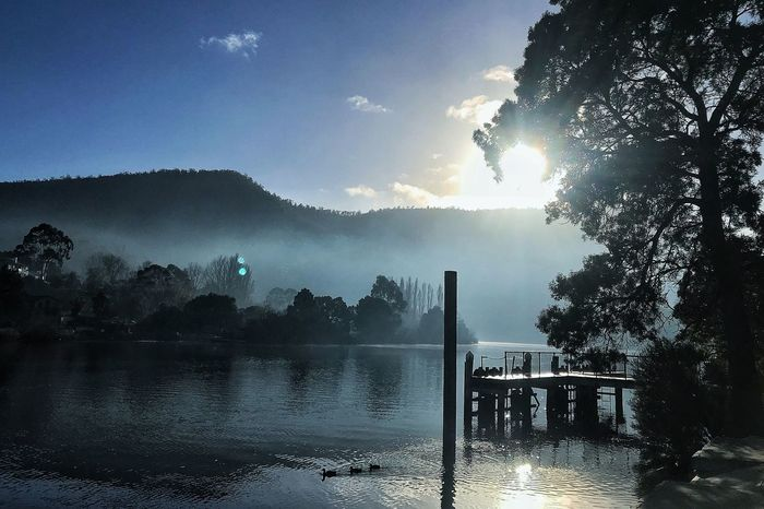 Tasmania Water Tree Nature Sky Plant Sunlight Lake Scenics - Nature Beauty In Nature Tranquility Outdoors Sunbeam Reflection Tranquil Scene