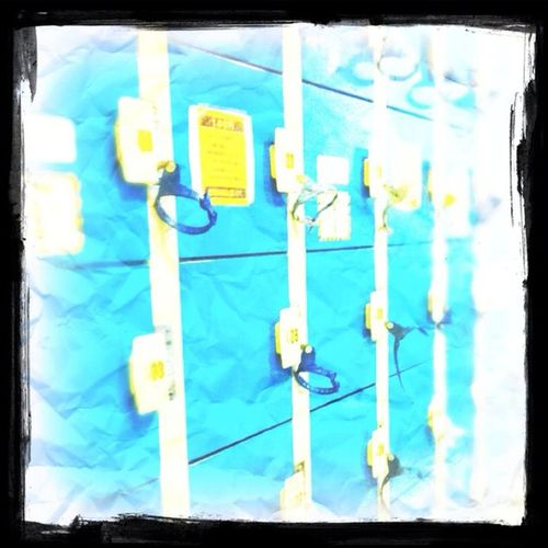 今日は何故かプール空いてた 泳ぎやすかったわMikaboon 水泳#プール