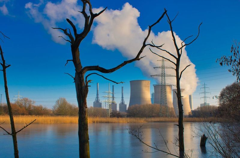 City Tree Water Bare Tree Branch Cityscape Business Finance And Industry Reflection Sky Architecture