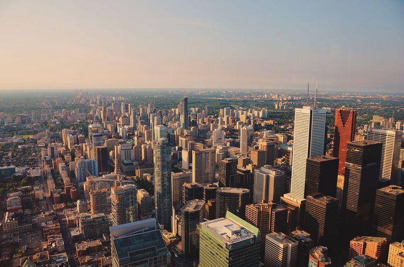 Toronto Sunlight