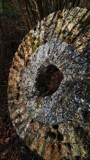 Altes Mühlrad Mühle Mühlrad EyeEm Best Shots Photooftheday Fototour Photographer Photography Mill Eye4photography  EyeEm Gallery Bestoftheday Best EyeEm Shot Foto Fotografie Mecklenburg Mecklenburg-Vorpommern Sunlight Shadow Close-up