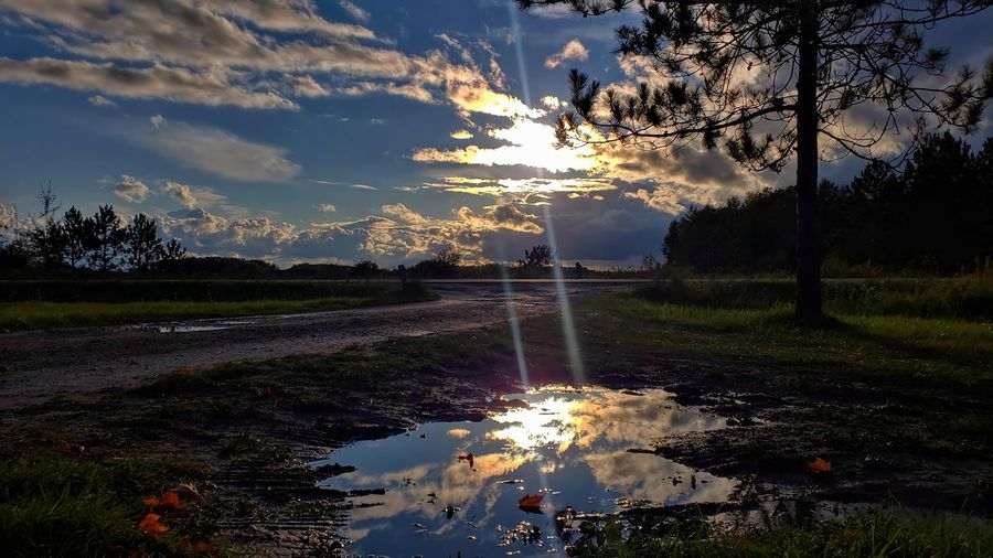 Puddle on field against sky at sunset