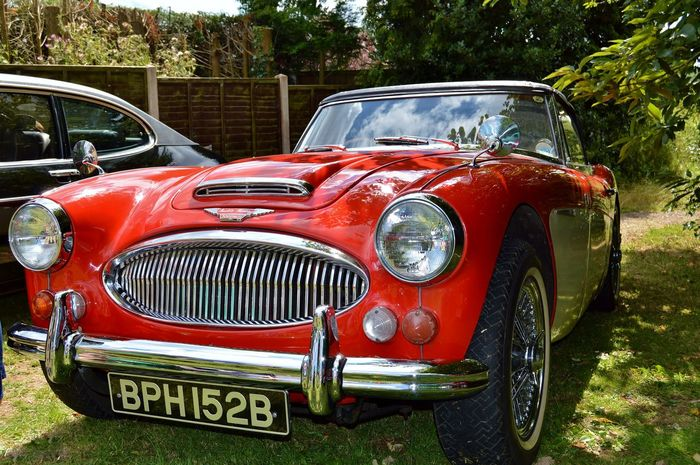 Austin Healey Automobile Beautiful British Car Car Car Porn Car Show Cars Check This Out Classic Car Fast Headlight Hello World Mode Of Transport Nice Car Nikon D3200 No People Old Relaxing Retro Styled Sports Car Transportation Vechicle Vintage
