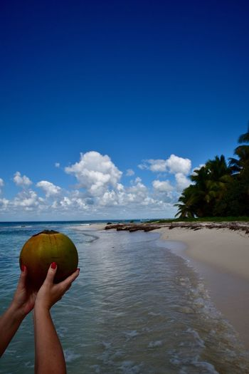 Woman holding coconut against blue sky