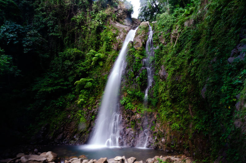 Ulan ulan falls 2 Philippines Leyte Tacloban  Water Tree Waterfall Spraying Power In Nature Forest Motion Long Exposure Rapid Blurred Motion Falling Water Flowing Stream - Flowing Water Colliding Running Water Fountain Double Rainbow