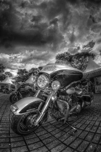 Black And White Harley Davidson UNITED_HDR