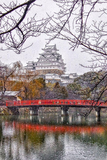 this is the most beautiful teample in Japan Japan Snow Beauty In Nature Walpaper Best EyeEm Shot Water Backgrounds Reflection Tree Sky River Bridge Rainfall Monsoon Rainy Season