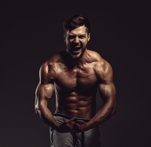 Athletic handsome man showing biceps muscles, studio shot Athlete Athletic BodyBuilder Bodybuilding Athlete Attractive Beauty Biceps Bodybulding Fitness Fitness Model Men Muscular Build One Person Physique  Sport Sportive Sports Sportsman Standing Strength Strong Studio Shot Triceps Young Adult