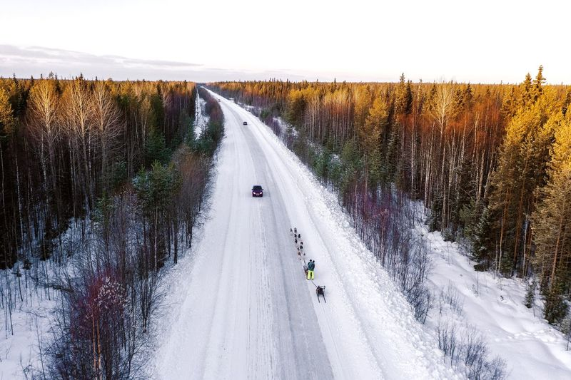 Road amidst trees in forest against sky during winter