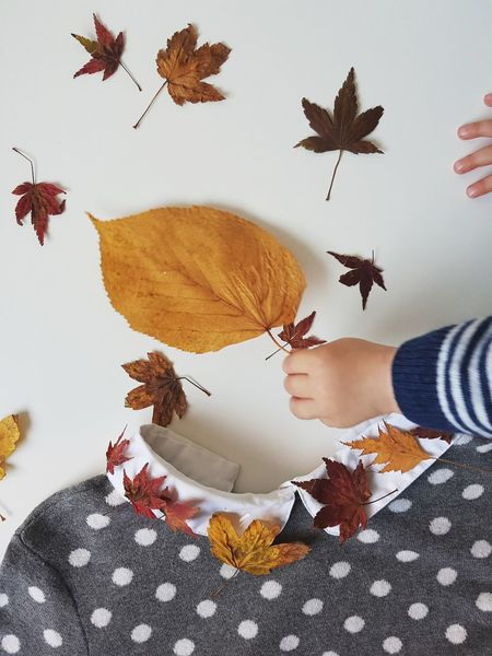 Playground Autumn Leaf Child Real People Childhood Nature Minimalism Collar Art Textile Clothing Pullover Dots Jumper Large Group Of Objects Tree The Week On EyeEm Fashion Colored Leaves EyeEm Best Shots White Background Nature Variation Human Body Part