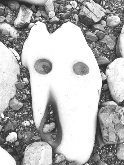 Rock - Object Beach Taking Time To See The Little Things Check This Out Life Is A Beach Oregon Coast Beachporn Faces In Nature