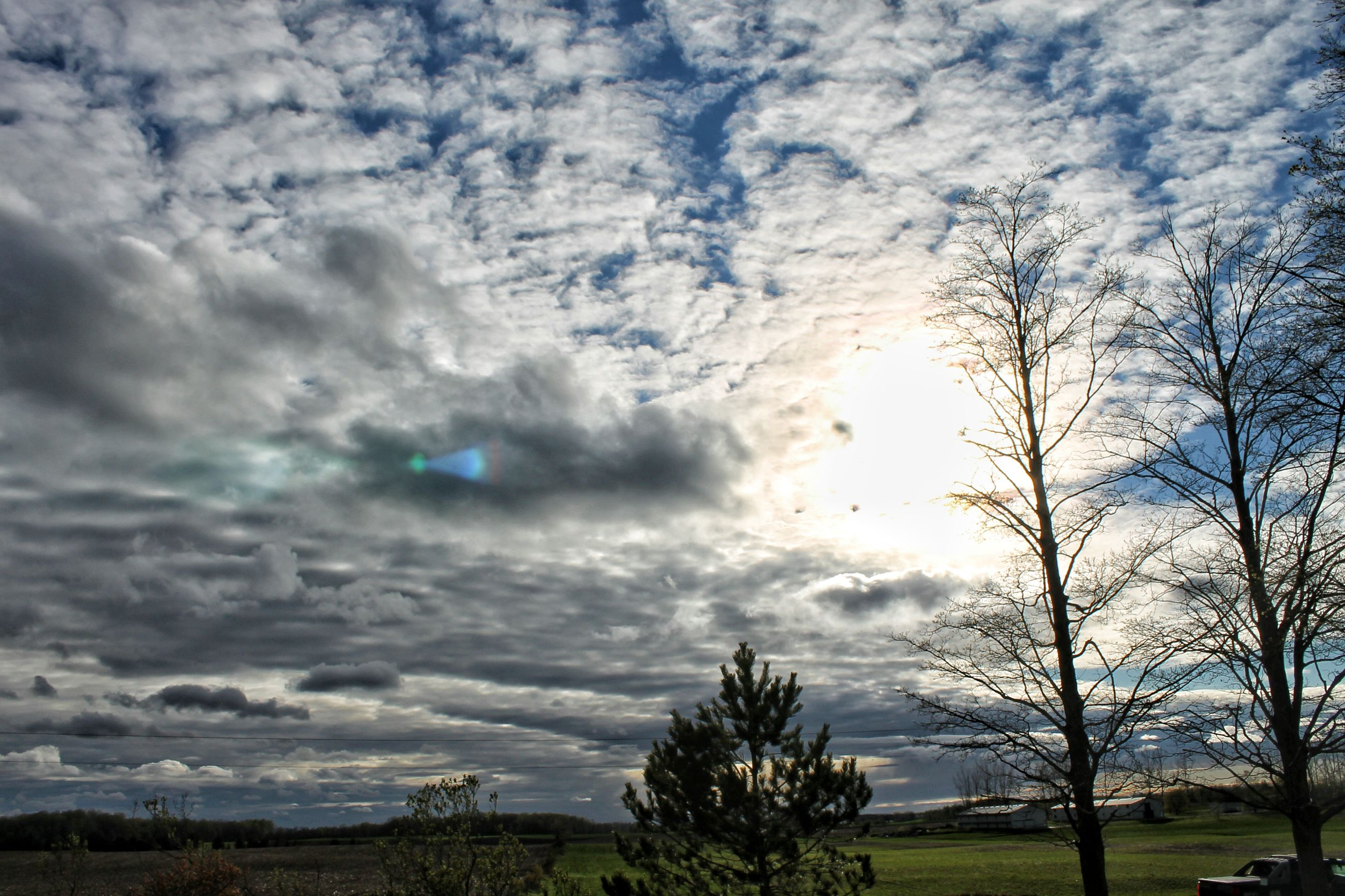 sky, cloud - sky, tree, cloudy, tranquil scene, tranquility, scenics, beauty in nature, nature, landscape, cloud, grass, field, weather, bare tree, overcast, idyllic, dramatic sky, outdoors, non-urban scene