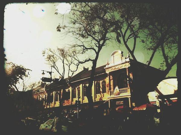 City Life Bkk Thailand Walk Street On Sunday Tree Good Memory The Week On EyeEm