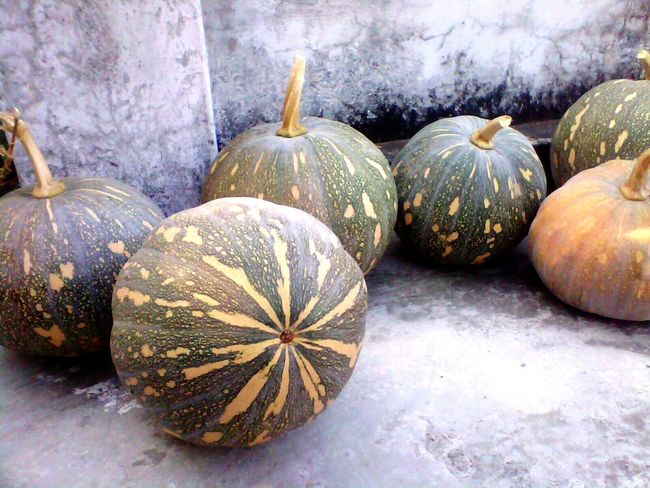 Stored yield of pumpkins kept on rooftop The OO Mission Pumpkins Mornihills Nature Nature Photography Rooftop Traditional Culture Cultivation Fine Art Photography