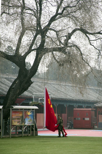 Beijing China Bare Tree Beijing Beijing China Built Structure Casual Clothing Chinese Flag Chinese Identity Chinese Military Chinese Military Flag Training Chinese Pride City Life Cityscape Day Growth Lifestyles Nature Outdoors Tree