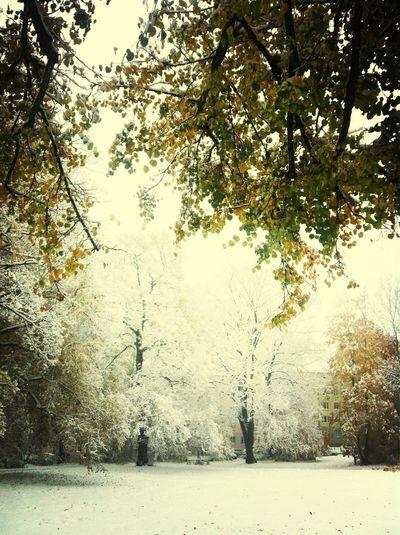 Oktoberschnee