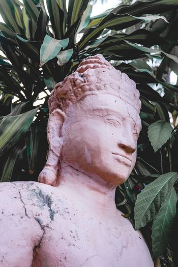 Close-up of statue against plants