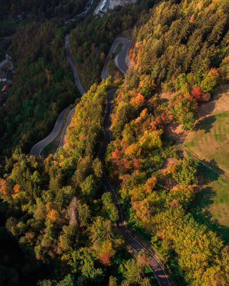 Aerial view of trees on mountains during autumn