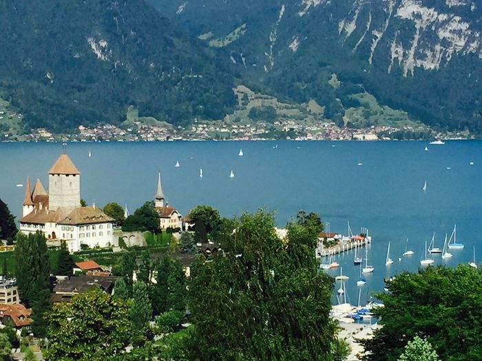 暑假终于去了瑞士旅游 自由行 真是美丽这是瑞士的Spiez镇 Holiday Travel Enjoying Life Beautiful