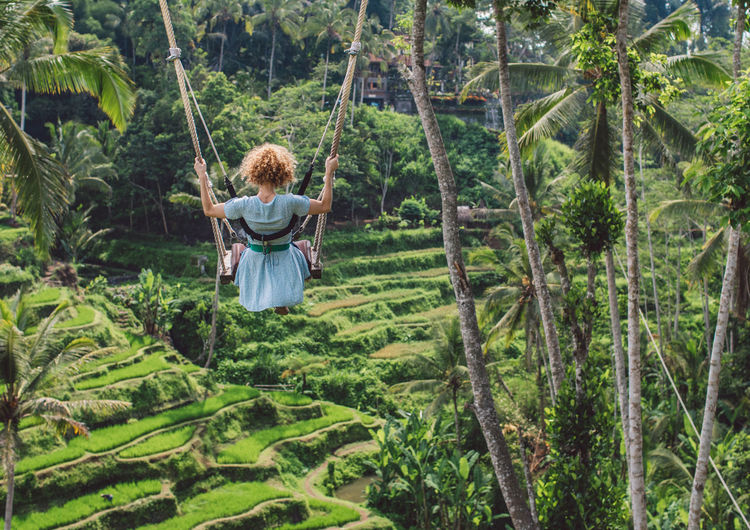Rear view of woman on swing in forest