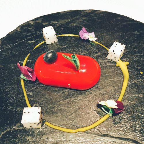High angle view of toy car on plant