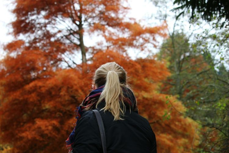 Rear View Of Woman Standing Against Autumn Trees