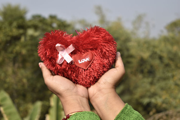 Cropped hands holding heart shape with love text