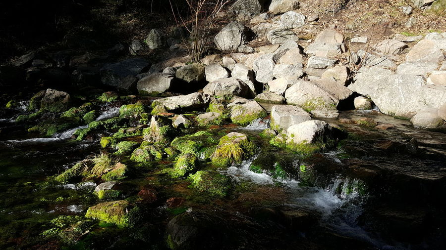 Sacramento head waters. Serenity Ro Cks And Water No Filters Or Effects Moss Aquatic Plants Shadows And Sunlight