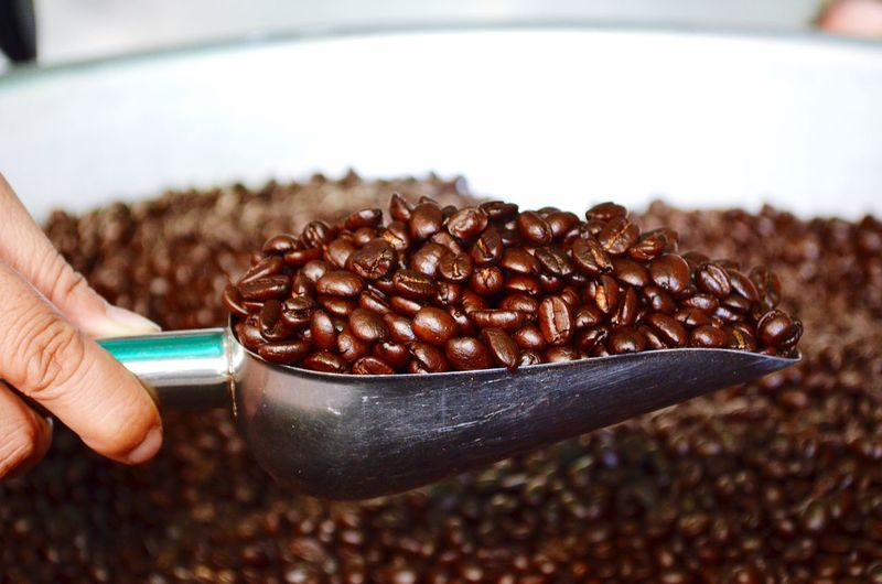 Cropped hand holding roasted coffee beans in serving scoop
