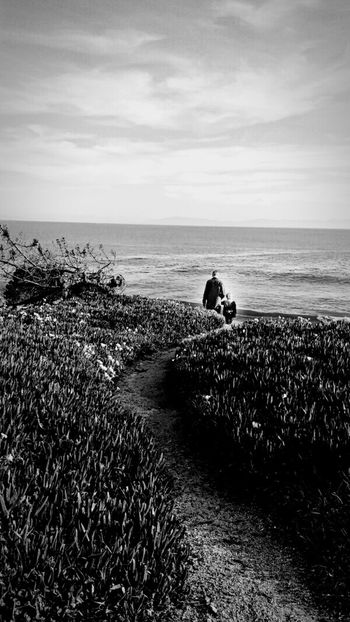 A walk with dad 💜 Time Together Looking Out Ocean Ocean View Cliffs Santa Cruz, Ca Family Time Two People Waves, Ocean, Nature Pathway Natural Contrast Sunlit Daddy Daughter Time ICE PLANT