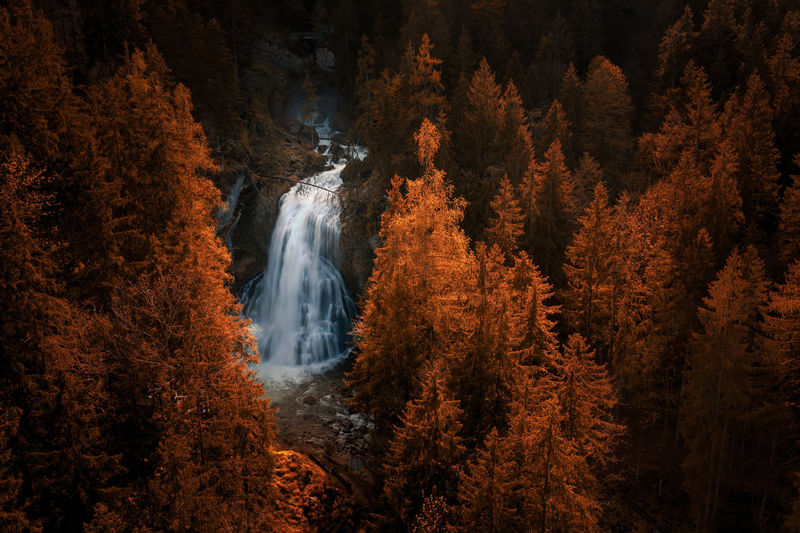 View of waterfall in forest during autumn