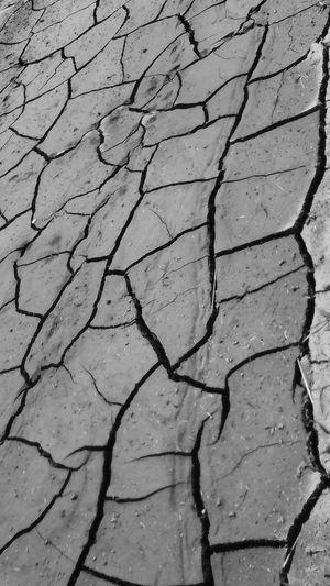 土 Soil Boden 乾いた Trocken Dry ひび割れ Riss Chaps