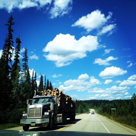 EyeEmNewHere Logging Logging Truck Sky Hearts In Nature Beautifulbc Tree Road Beauty In Nature Trees And Sky Trees Of BC Northern BC