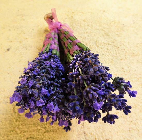 Craft Creative Creative With Flowers Creative With Lavender Flower Flower Head Lavande Lavender Lavendercraft Lavenderflower Purple